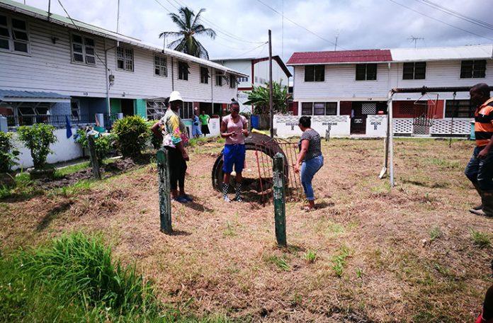 Public Management   University of Guyana
